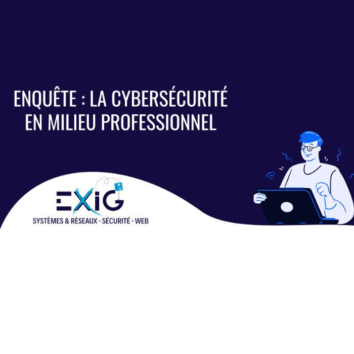 La cybersécurité en milieu professionnel